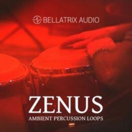 Bellatrix Audio Zenus Ambient Percussion [WAV] (Premium)