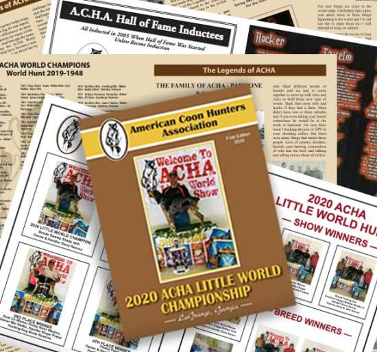 ACHA2020-Magazine promo