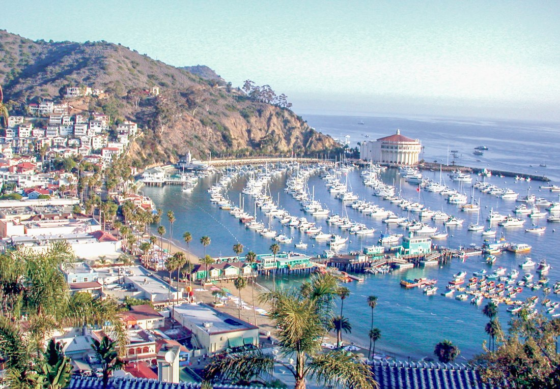 Long Beach Visitors Guide Catalina Island | World In For Days: A Travel & Lifestyle Blog