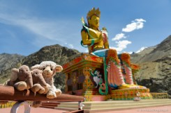 2014-07-24 13-58-08 Nubra Valley