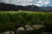 2014.07.27-16h09-DSC_0325 Pangong Lake