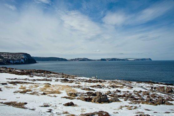 Скалы и фьорды Ньюфаундленда