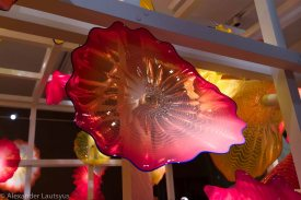 Chihuly-19