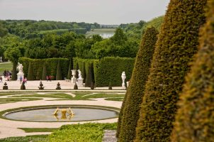 Versailles Garden and Fountain