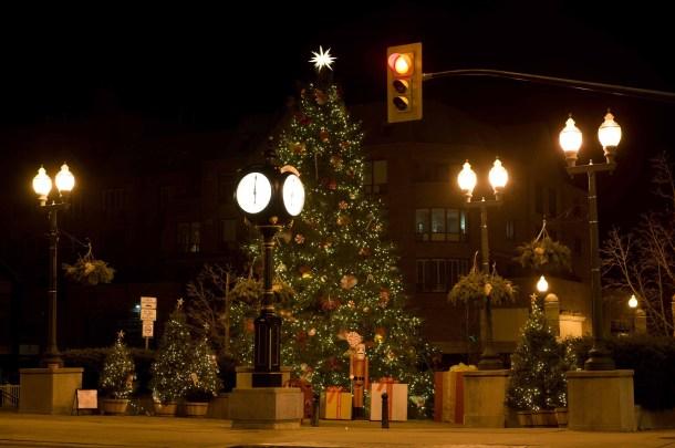 Main Christmas Tree in town of Oakville