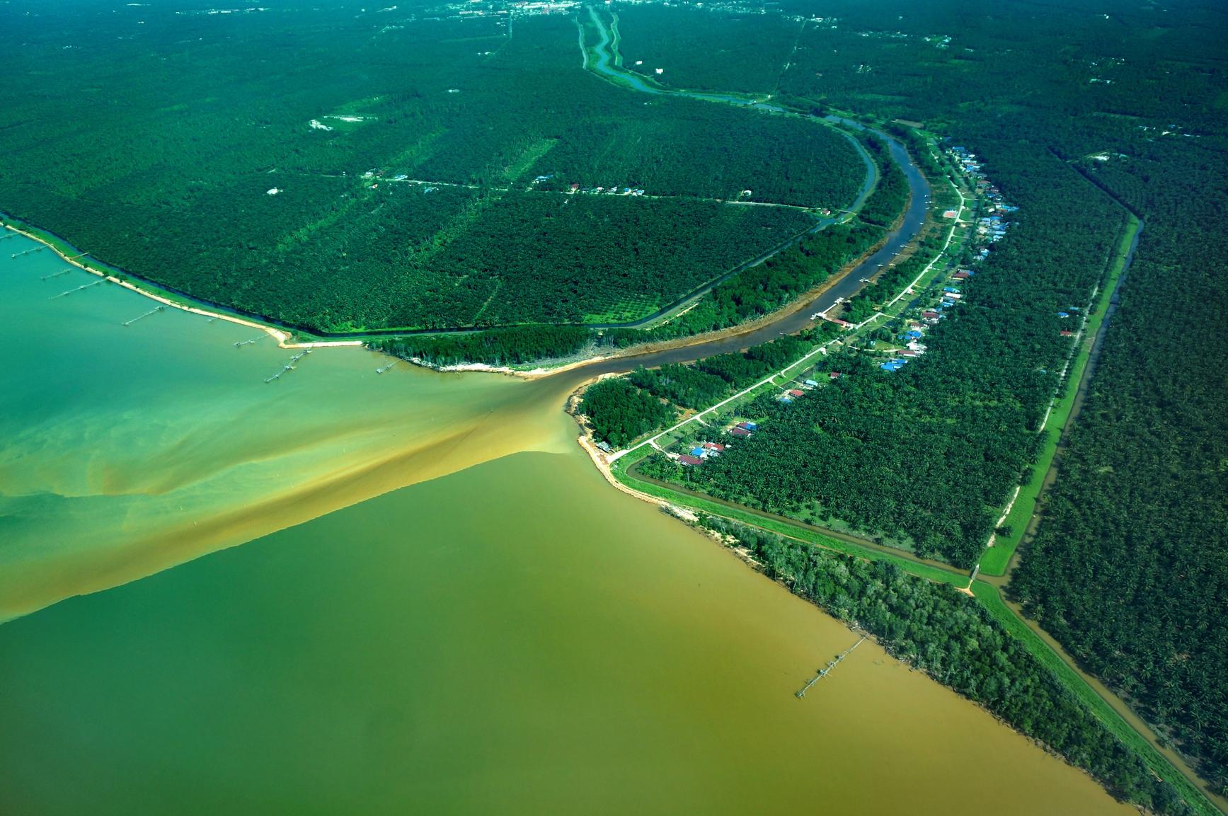 Image result for estuary