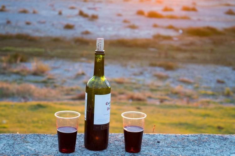 Patagonian wine: planning a trip to Patagonia