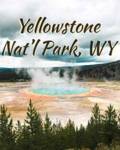 yellowstone-wy-icon-540---4x5-V2 (yellow bigger1)