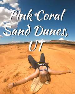 pink-coral-sand-dunes-icon__2