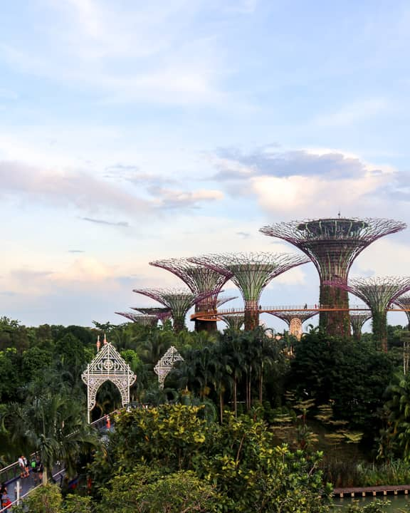 Budget Friendly things to do in Singapore: Gardens by the Bay