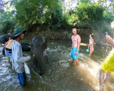 Most Ethical Elephant Sanctuary in Chiang Mai