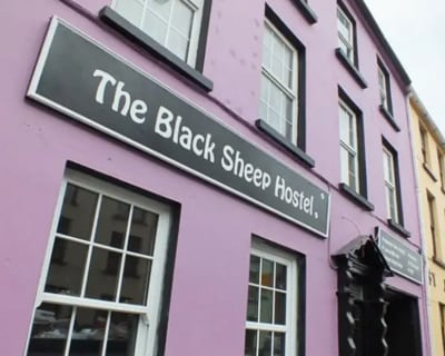 Where to stay in Killarney - Black Sheep Hostel