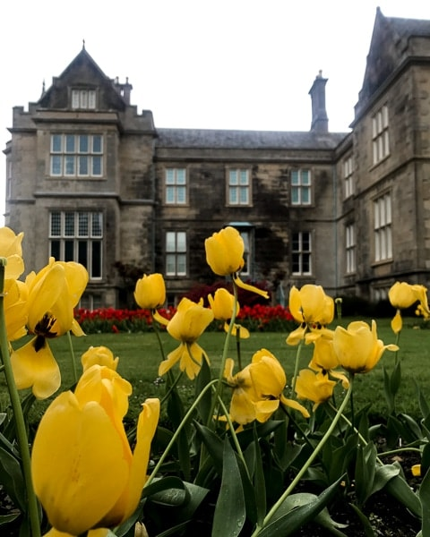 Day Trip Guide to Killarney National Park - Muckross House