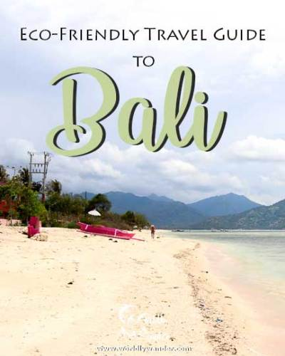 Eco-Friendly-Bali-Itinerary-Icon-new
