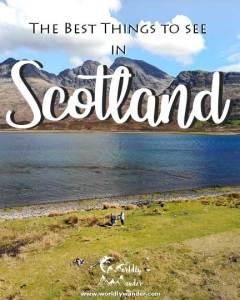 Scotland-Icon---540-4x5-(New-font-v2)