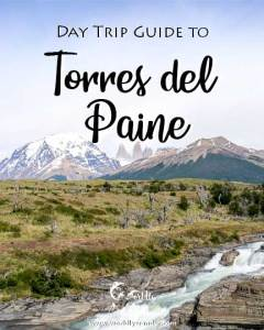 Torres-del-Paine-day-trip-icon-1-new