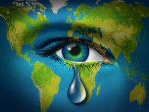 Global image sad