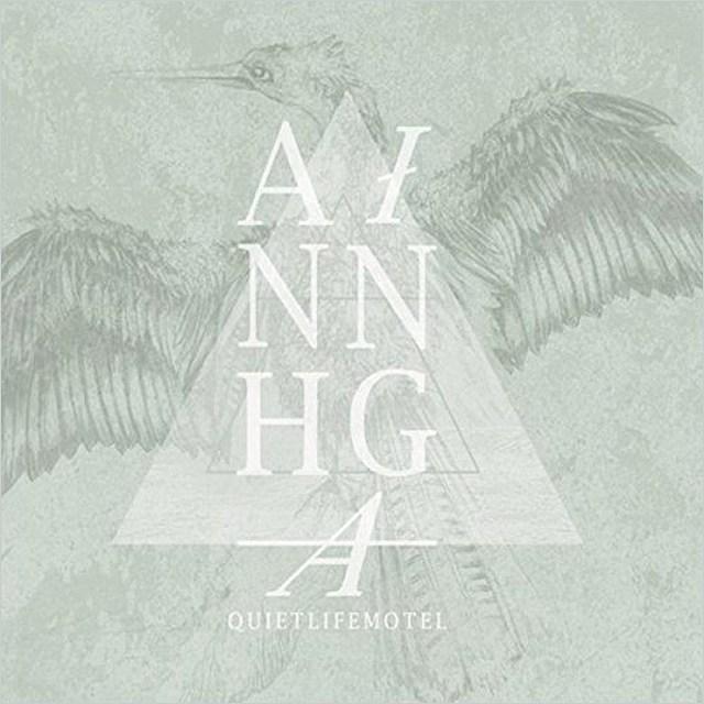 Anhinga - Quiet Life Motel - David Schulman