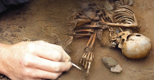 Ireland: Archaeologists Discover Remains of New Humanoid Species