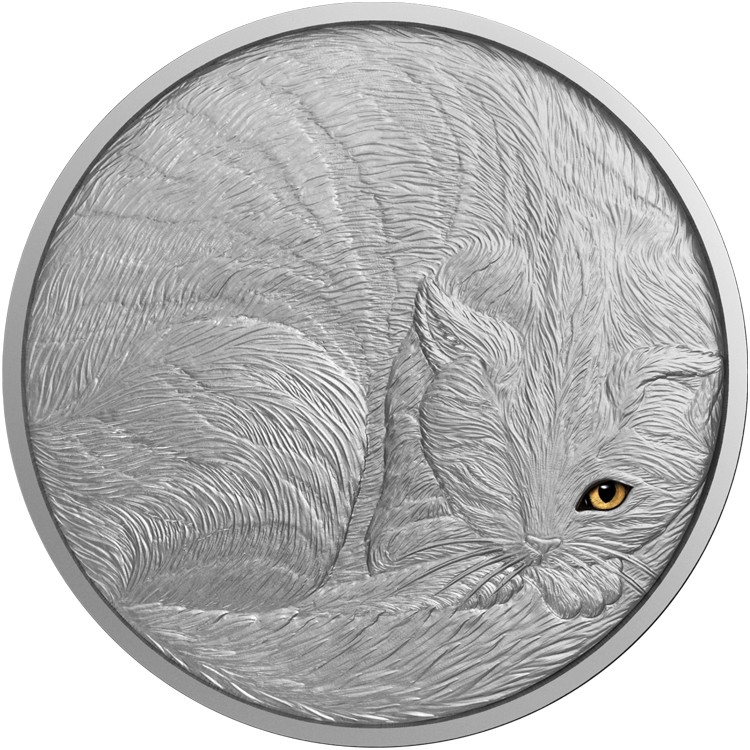 2016 Cat Eye Coin From Animal Series Reverse