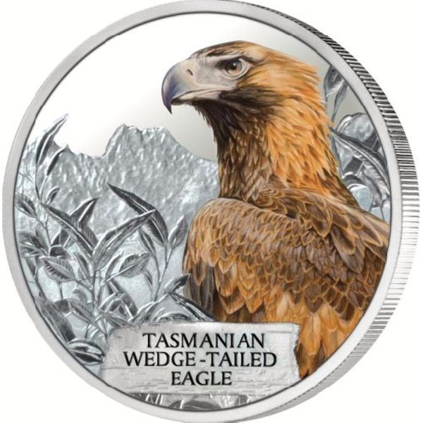 Tasmanian Wedge-Tailed Eagle