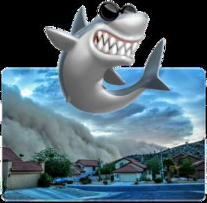 Sharknado vs Haboob