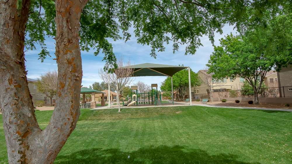 Montelena | Queen Creek Neighborhood