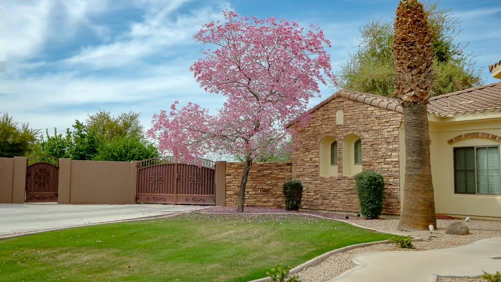 TerraRanch | Queen Creek Neighborhood
