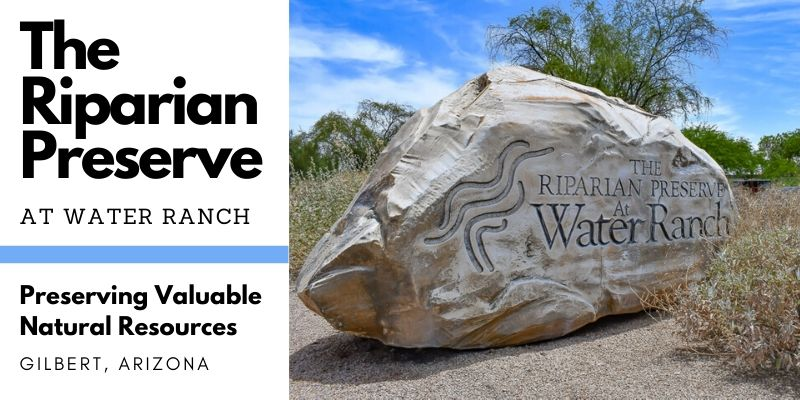 The Riparian Preserve at Water Ranch in Gilbert, AZ