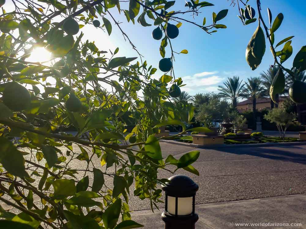 Encanterra | Neighborhood In Queen Creek, AZ