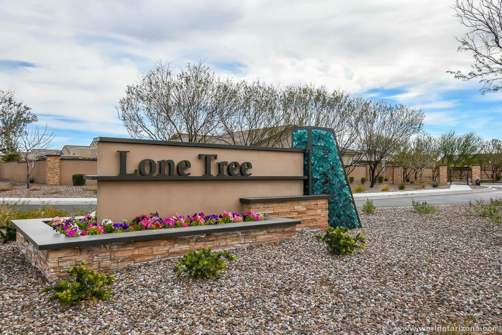 Lone Tree | Neighborhood In Chandler, AZ