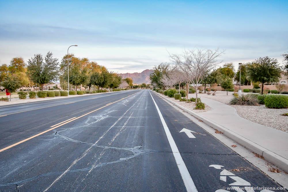 Sun Groves | Neighborhood In Chandler, AZ