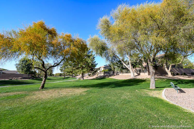 Pecan Creek | Neighborhood In San Tan Valley, AZ