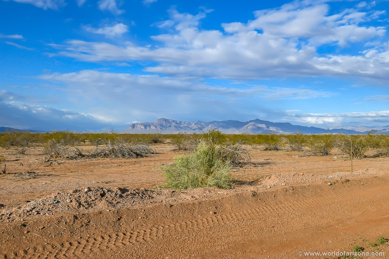 Cimmaron Trails | Neighborhood In San Tan Valley, AZ