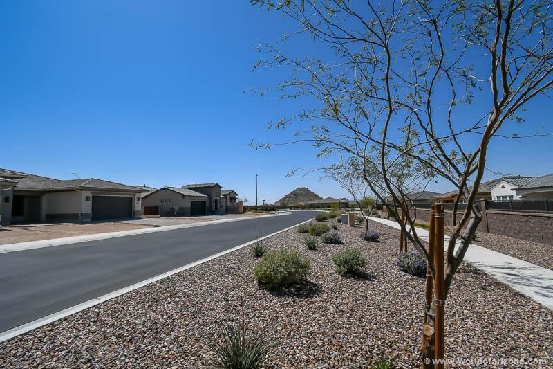 Copper Bend   Neighborhood In Queen Creek, AZ