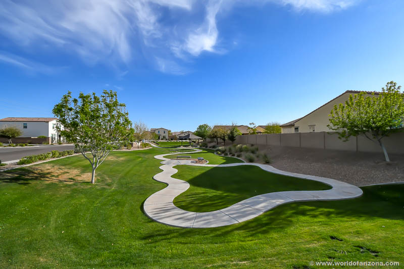 Mills Run | Neighborhood In San Tan Valley, AZ