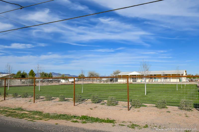 Queen Creek Suburban Ranches | Neighborhood In San Tan Valley, AZ