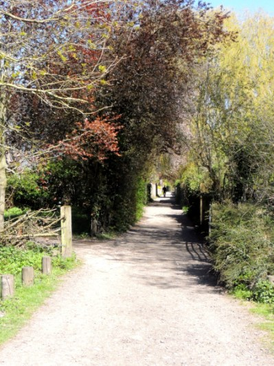 The way towards the bridge, covered over by the trees