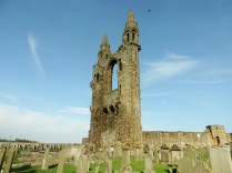 Part of the St Andrews Cathedral