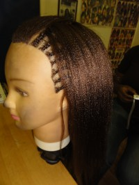World of Braiding Tree Braid Weave training
