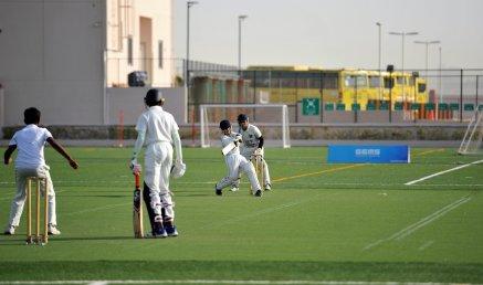 Cricket 03