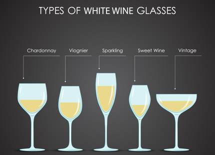 Vector image of common types of white wine glasses
