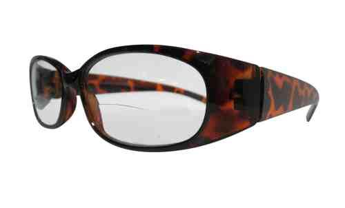 Reina Bifocal Reading Glasses in Tortoiseshell