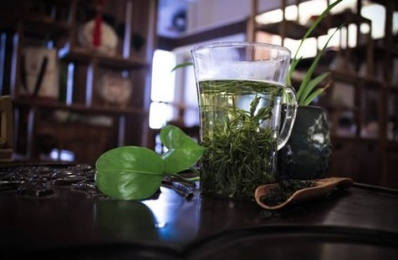 Green Tea Benefits Uses