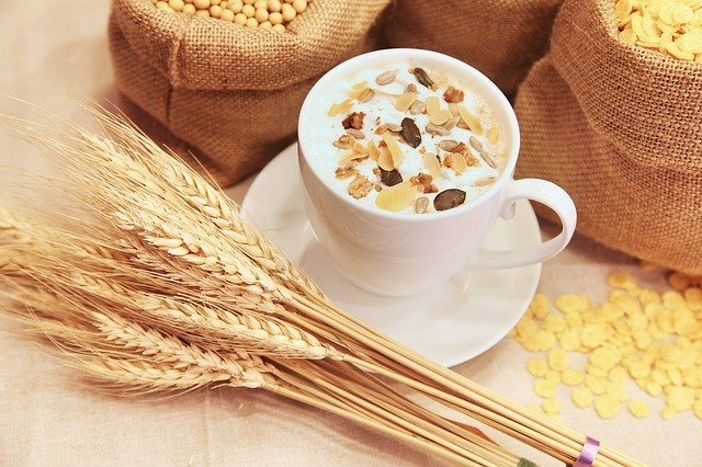 Oats Foods to cure Premature ejaculation