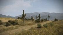 Mexico Desert Landscape