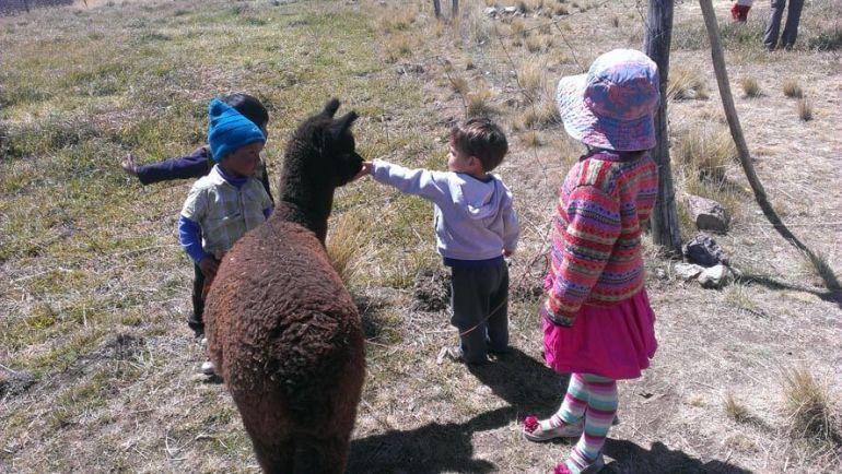 11 Fun Peru Facts For Kids