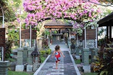 Bali Taman, Lovina