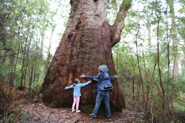 Hiking With Kids - 8 Tips