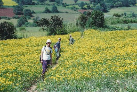 Trekking between Inle Lake and Kalaw